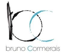Domaine Bruno Cormerais - Muscadet atypique à Clisson (44)